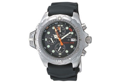 Citizen Uhrenarmband BJ2010-05E